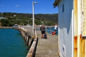 pigeon netting to be installed under wharf