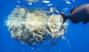 plastic garbage island