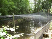 """<h5>Hyde Creek Watershed Society Pond Project</h5><p>Pond netting using our Predator netting # 48 w/rope perimeter.<br /> Learn more about <a href=""""/netting-products/agriculture-netting/"""">agricultural netting</a>. </br><a href=""""/portfolio/hyde-creek-watershed-pond-project/"""">See all the pictures.</a></p>"""