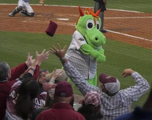 Charlotte-Knights-screen safety netting