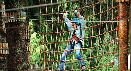 park netting