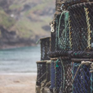 fisheries cages